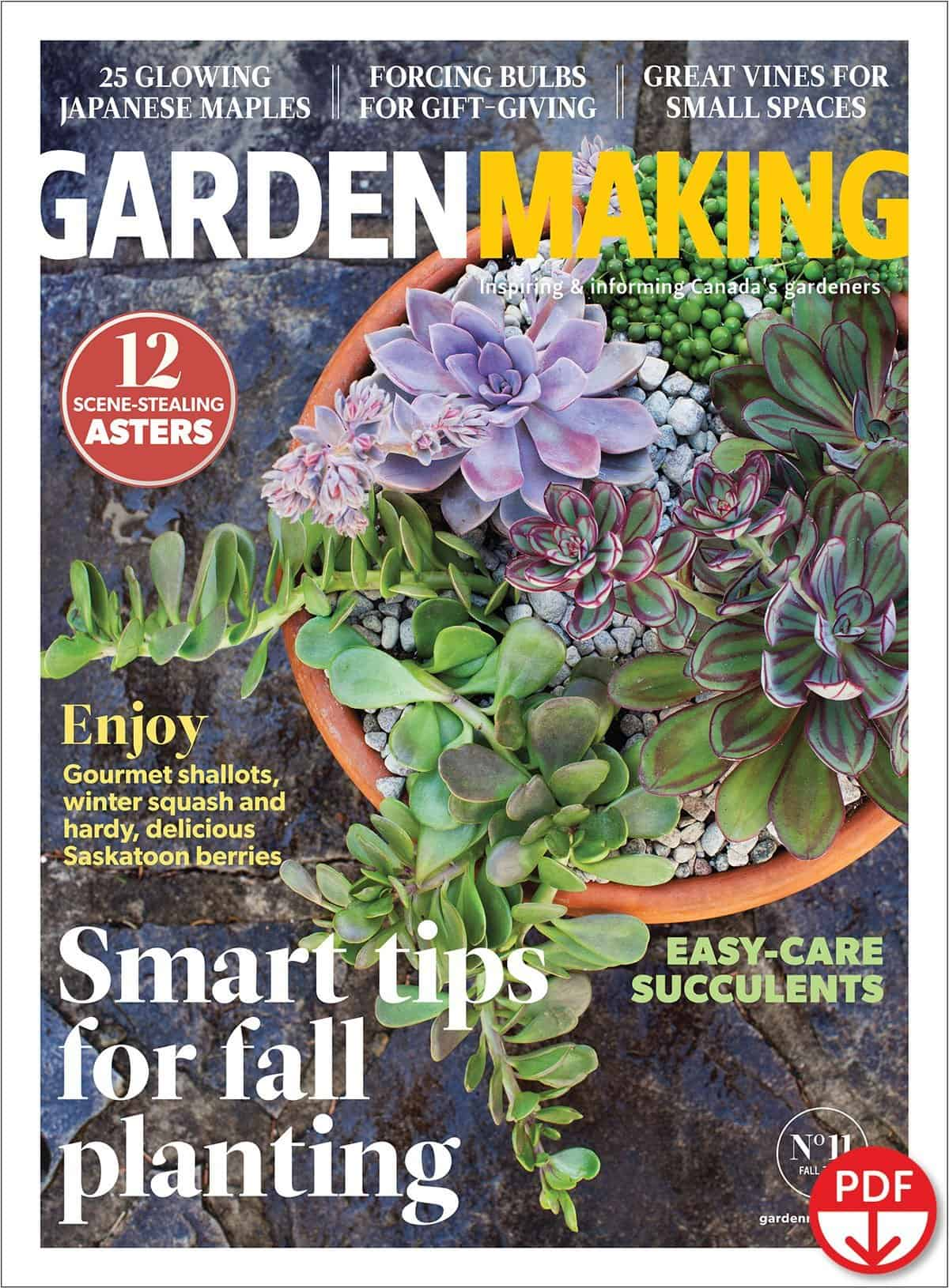 Succulents are fascinating and easy to grow. Garden Making No. 11 features an article on easy-care succulents. There's also smart tips for fall planting and much more in the 70+ pages of useful articles and inspiring photos.