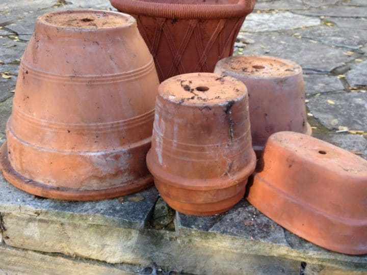 Clay pots last longer when emptied, dried and stored upside down. (Garden Making photo)