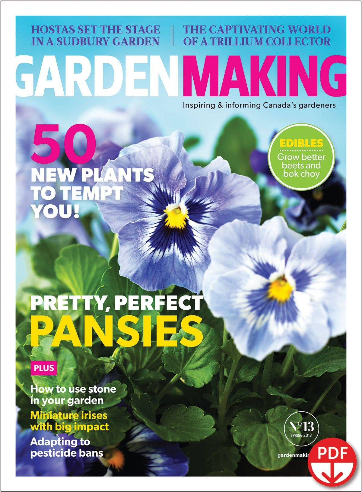 Pansies and other colourful flowers sparkle in Garden Making No. 13.