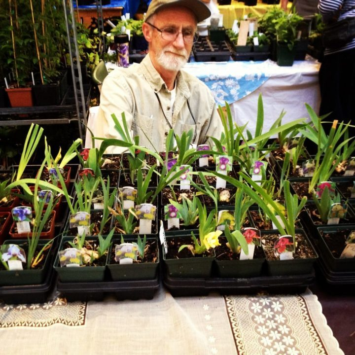"""A wide variety of irises were for sale, though """"sold out"""" signs quickly went up next to each iris's name. Also available was a large selection of clematis, alpine plants, succulents, hardy orchids, trees and peonies, including peony tenuifolia, which has fern-like foliage...and that's just to name a few."""