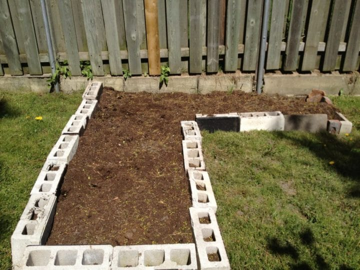 """We made our raised bed an """"L"""" shape, to take advantage of the back fence, which can be used as a support for beans. At this point, our bed is waiting for more soil, and then planting."""