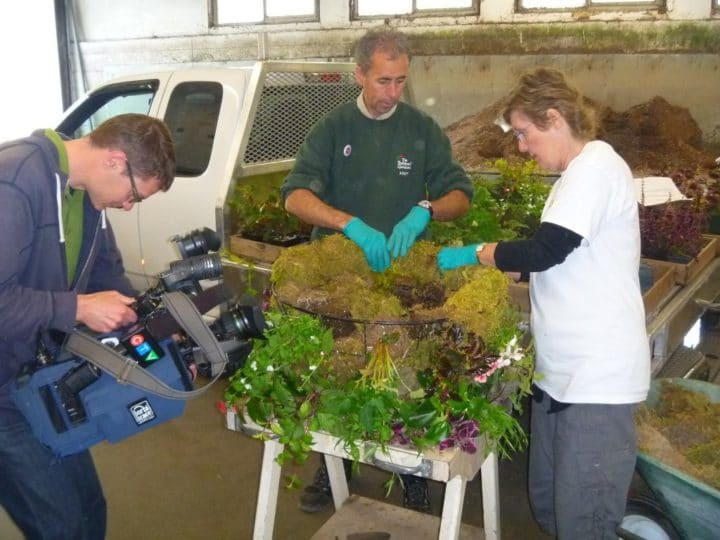 A local CTV crew films Dave Sledzinski showing Lorraine how to prepare a moss basket at Butchart Gardens.
