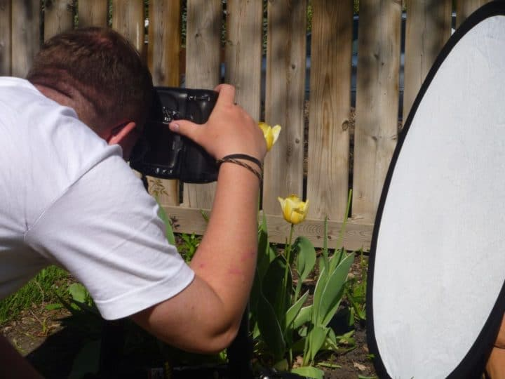 Photographers use reflectors like the one Paul is using in this shot to cast some light on the shadows on these tulips.