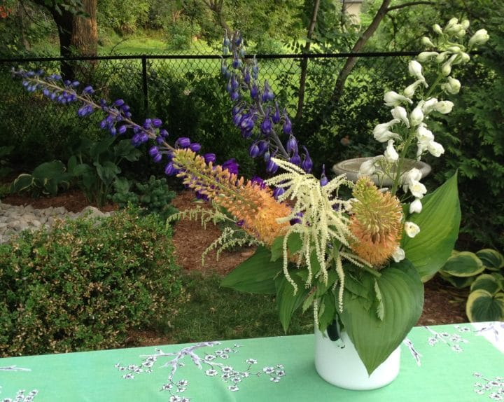 Delphiniums, goat's beard and foxtail lily are a pretty colour combination with hosta leaves skirting the base. When using delphiniums, try filling the thick, hollow stems with water to keep them from drooping: fill with water from the tap, and keep you finger on the base of the stem until you insert into water.