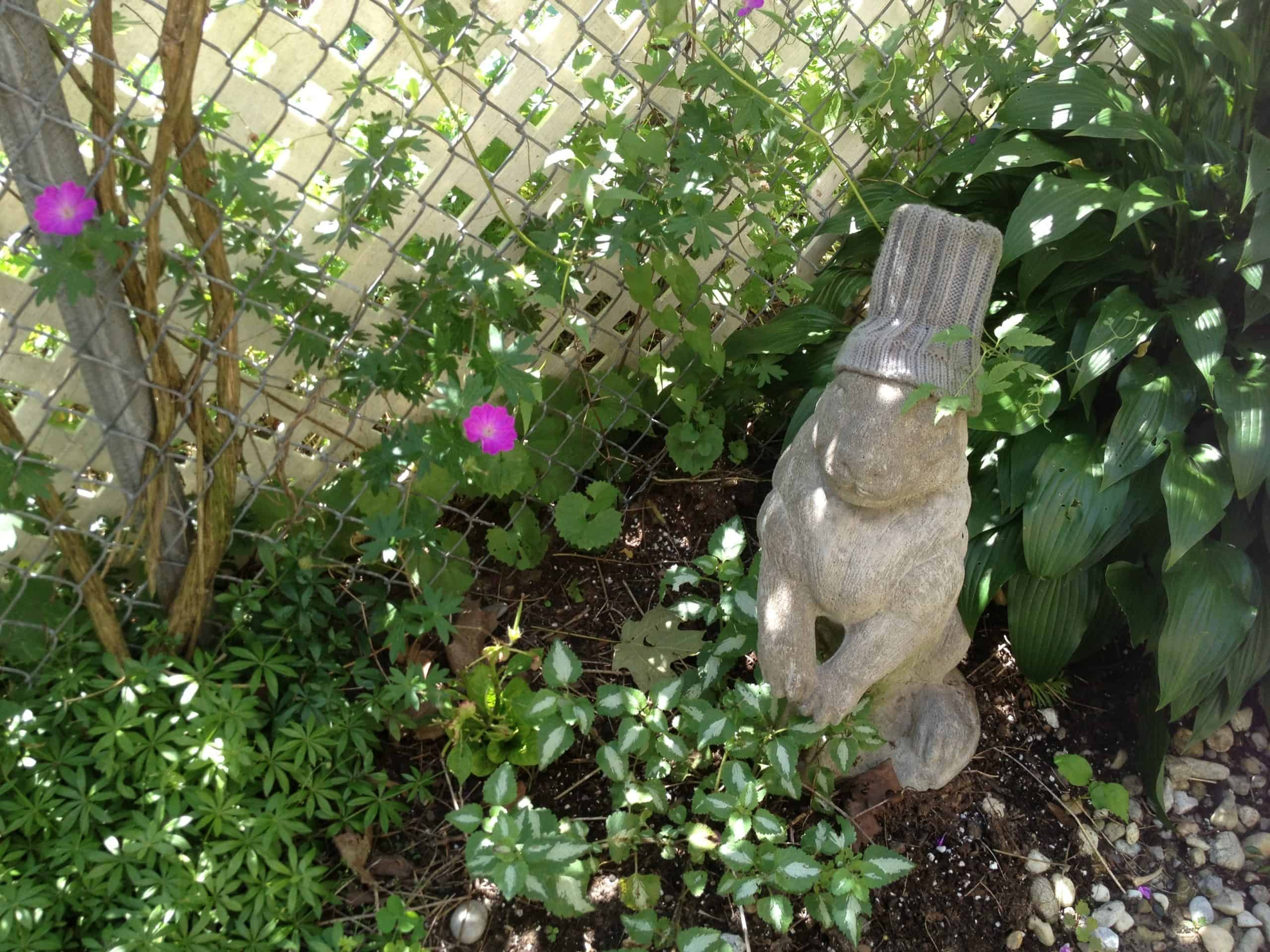 This garden had many beautiful sculptures and pieces of garden art, but this bunny, with a toque replacing his broken ears, was a favourite of mine.