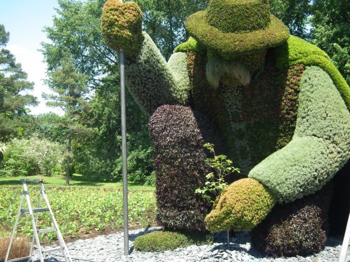 A horticultural tribute to The Man Who Planted Trees