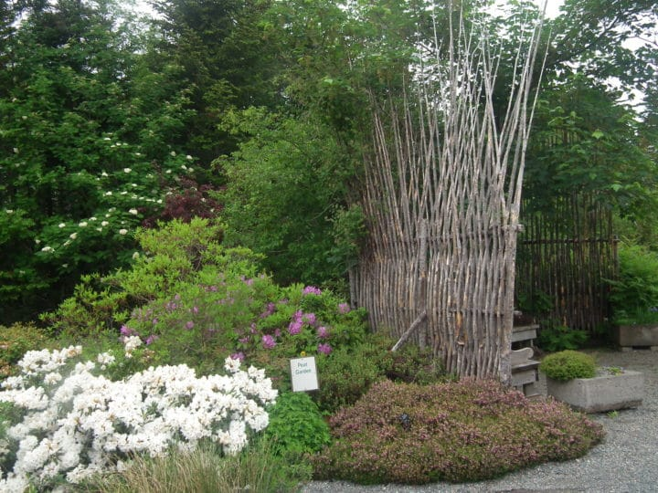 """A Newfoundland """"quiggly fence"""" protects the heritage garden."""