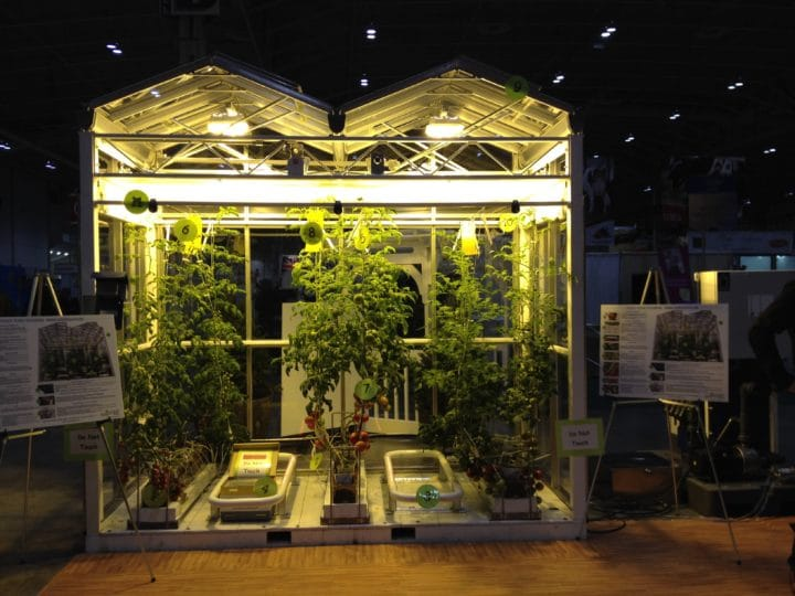 This display of a working greenhouse includes everything needed to grow tomatoes year round, including live bees.