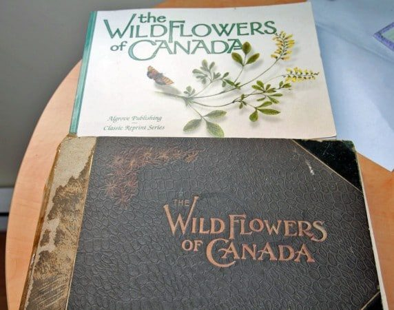 Two treasured editions of Wildflowers of Canada withcolour plates. (Photo by Jodi DeLong)