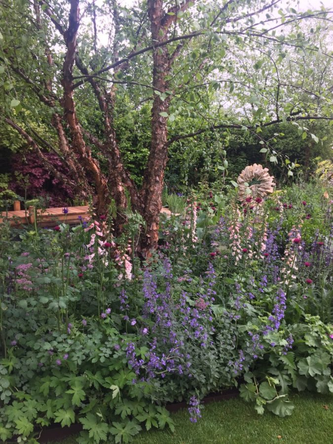 Clumps of mature river birch provided the canopy at the Morgan Stanley garden. Unlike other garden shows I've visited, Chelsea focuses on the plants - generous displays, diverse choices, exceptionally well grown, artfully combined. Flowers truly are the stars at this show.