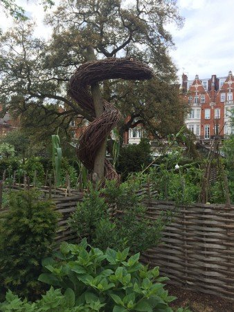 A twiggy serpent overlooks a section of the medicinal herbs in the Chelsea Physic Garden.