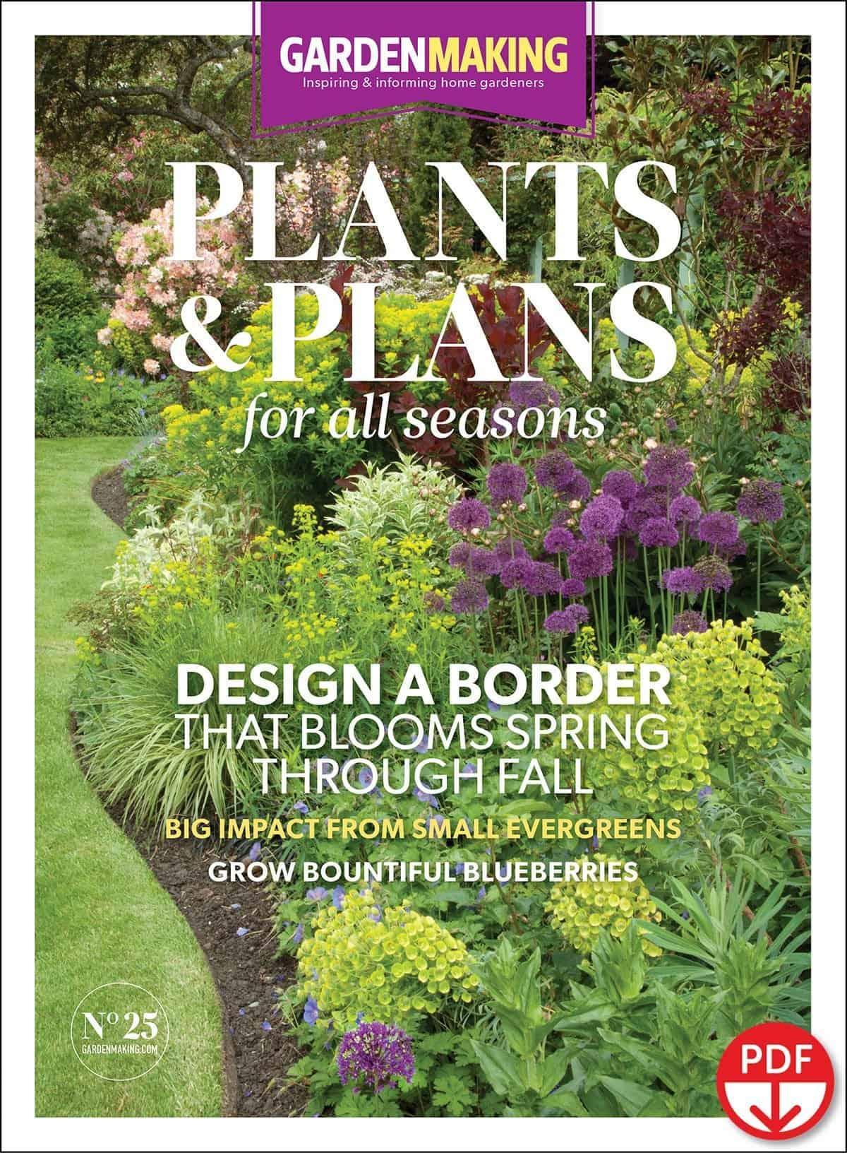 Plants & Plans