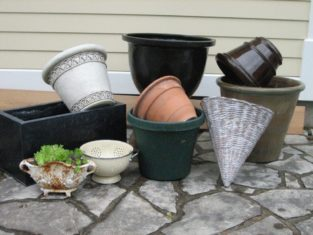 Choose containers that are practical and also suit your garden style.