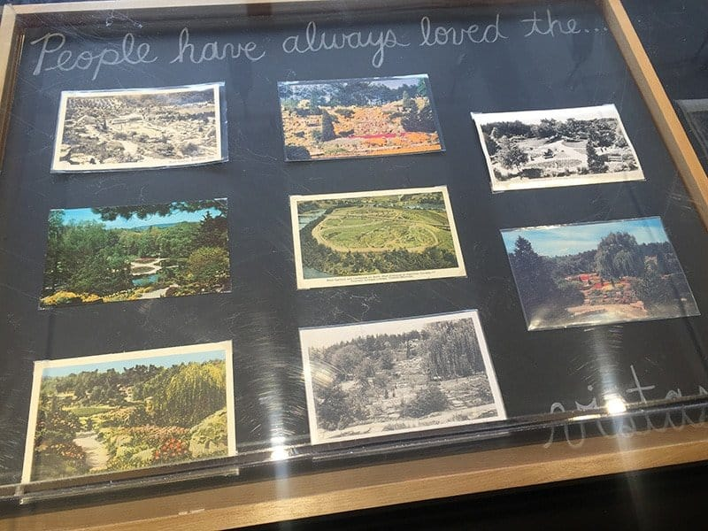 Vintage postcards on display at the Garden House in the RBG Rock Garden.