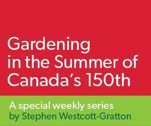 Gardening in the summer of Canada's 150th