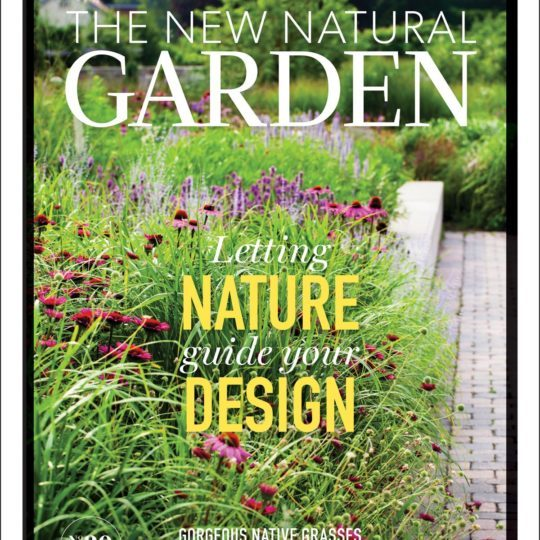 Garden Makingfocuses on what we're calling The New Natural Garden in issue #30. We explore ideas and suggestions to encourage gardeners to let nature help guide the design of their gardens.