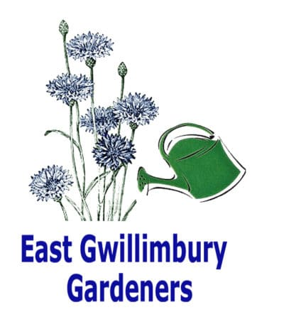 East Gwillimbury Gardeners: Summer Flowering Bulbs