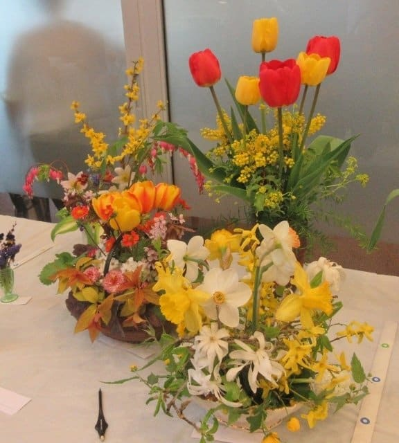 Everything You Want To Know About Showing Flowers