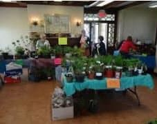 Annual Plant Sale in Beaconsfield