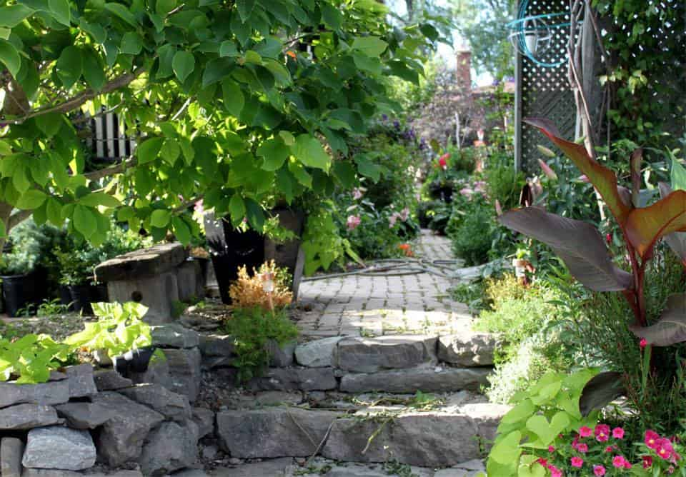 Thorold Horticulture Day and Ribbon Cutting Ceremony