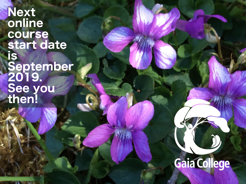 Gaia College Fall Online Classes in Organic Land Care