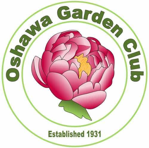Creating a Naturalized Garden