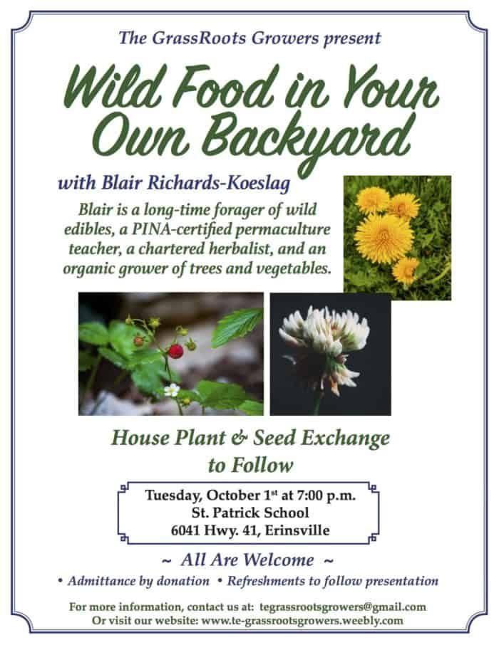 Wild Food in Your Own Backyard