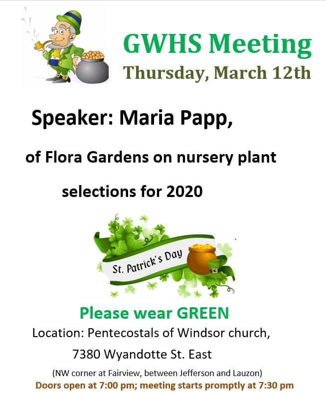 Maria Papp on Nursery Plant Selections for 2020