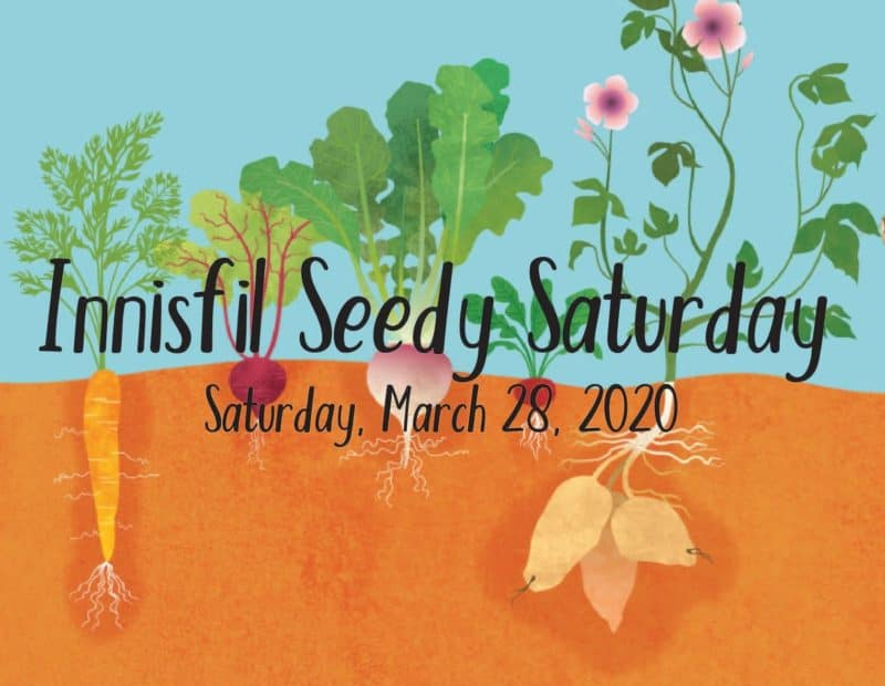 Innisfil Seedy Saturday