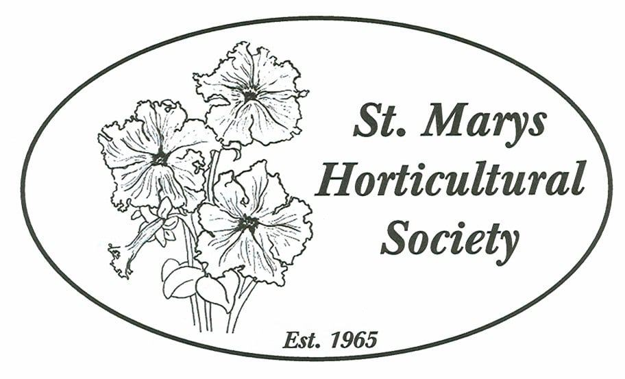 Plant Auction in St. Marys