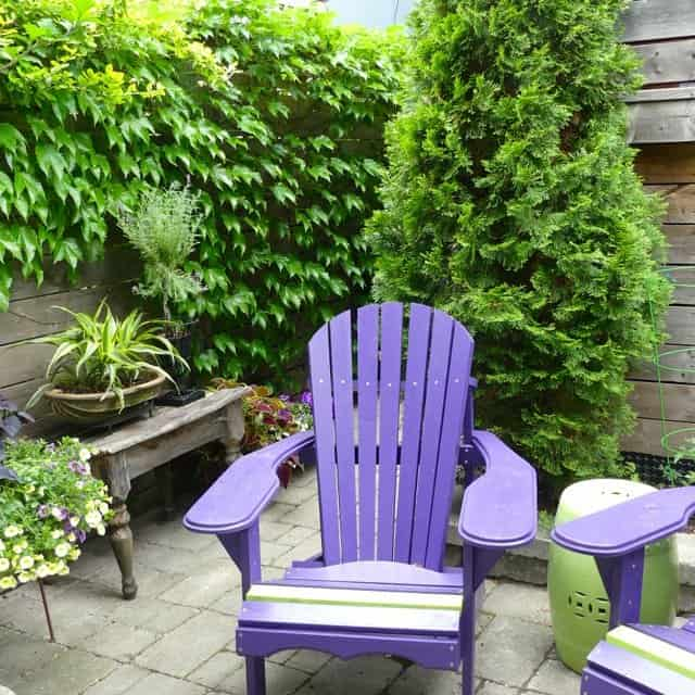 Hidden Gardens and Private Spaces Tour in Cabbagetown