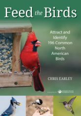 Feed the Birds book cover