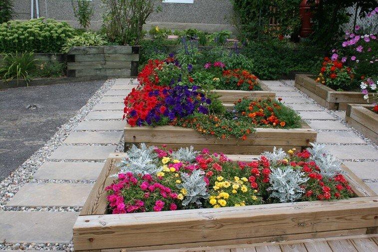 Ottawa Horticultural Society online presentation in November