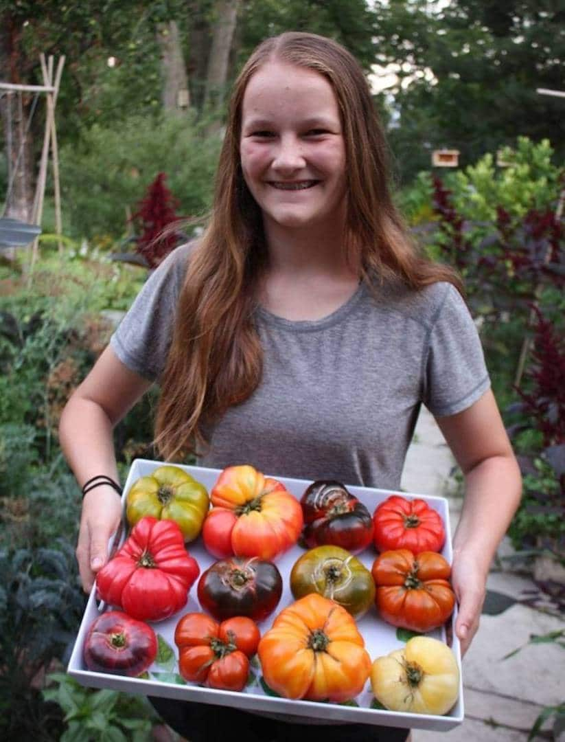 Online event: Emma Biggs on tomatoes