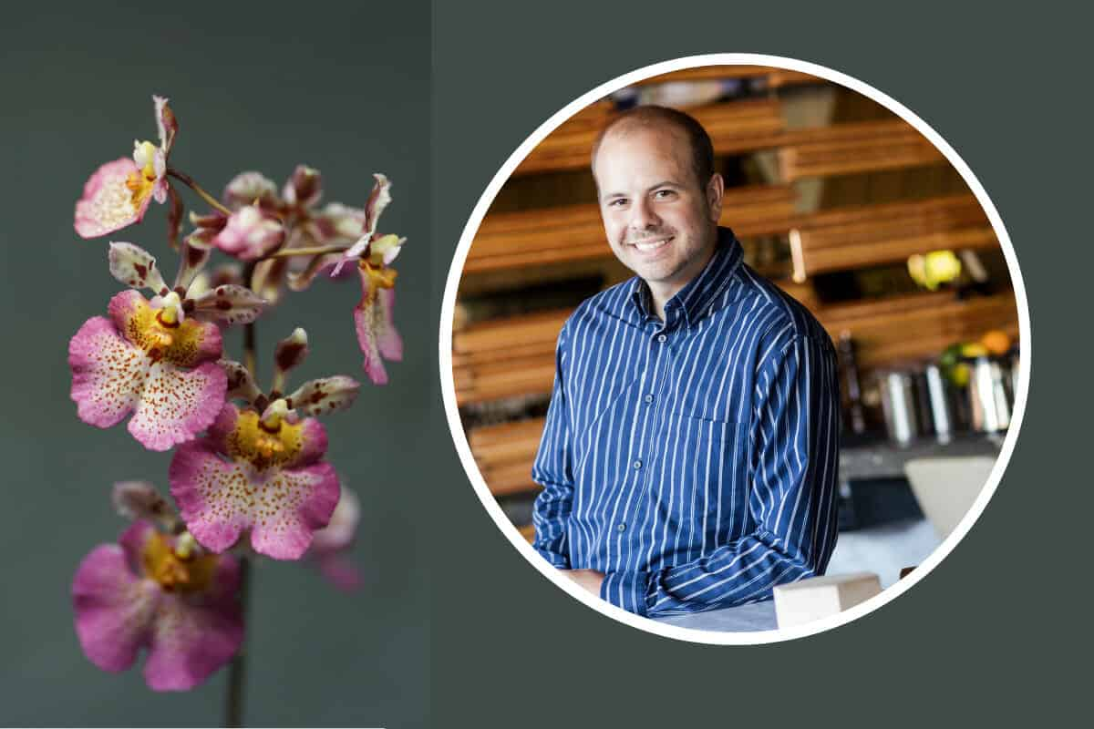 Introduction to orchids