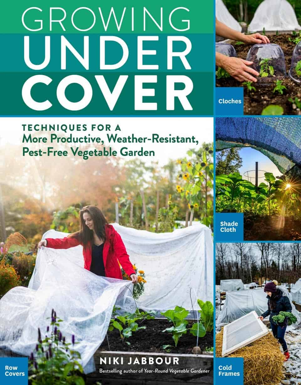Niki Jabbour: Growing under cover with techniques for a productive, weather-resistant, pest-free vegetable garden