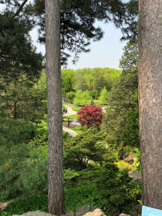Looking down into the Rock Garden at Royal Botanical Gardens in Burlington, Ontario, in late May 2019.