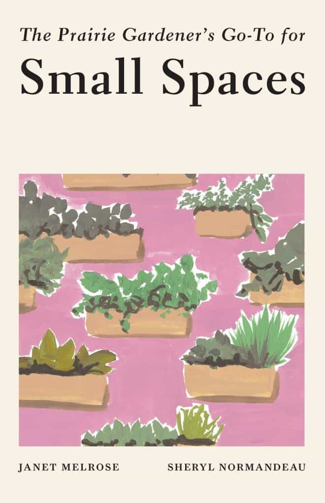 Prairie Gardener's Go To for Small Spaces