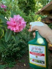 Plantskydd-rhodo-spray
