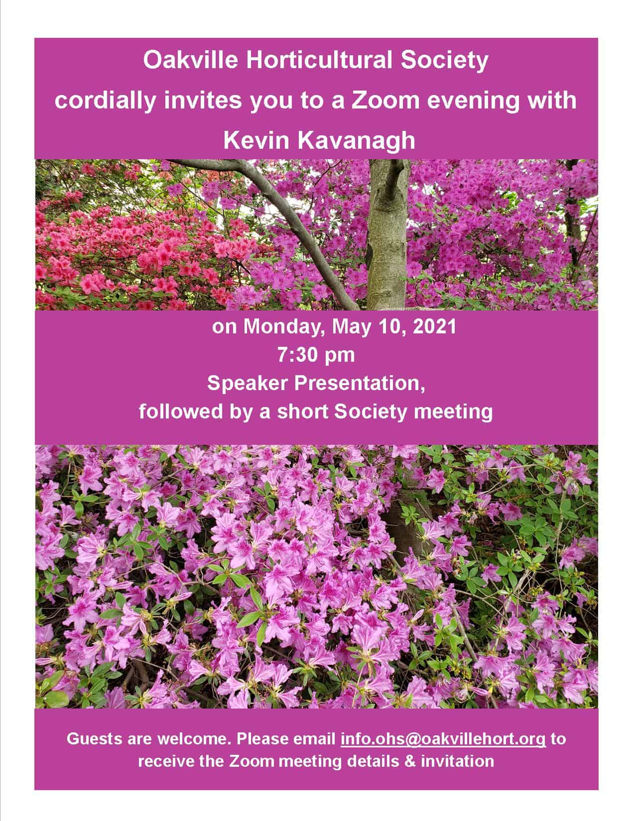 Successful culture of rhododendrons and azaleas in Ontario
