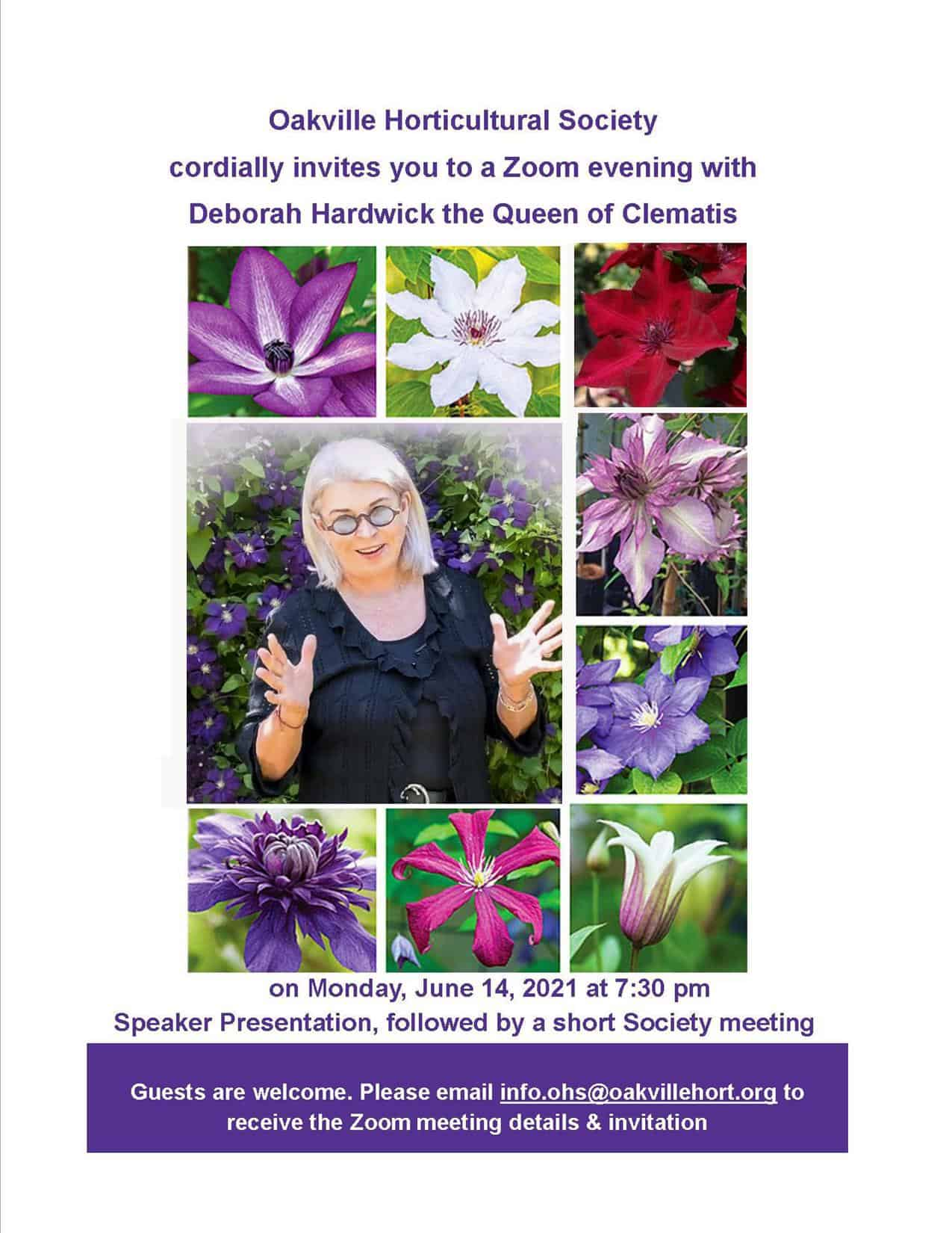 Deborah Hardwick: The diversity, myths and truths about clematis